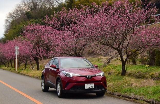 2017年のSUV販売台数ベスト5No.1のトヨタC-HR